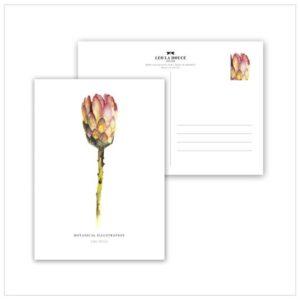 Leo La Douce Postkarte Red King Protea