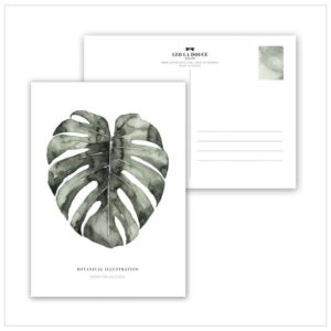 Leo La Douce Postkarte Urban Monstera