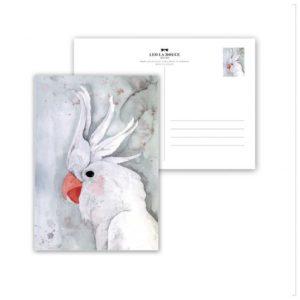 Leo La Douce Postkarte White Kakadu