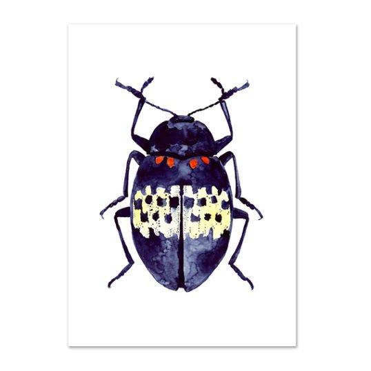 Leo La Douce Kunstdruck A4 Blue Beetle