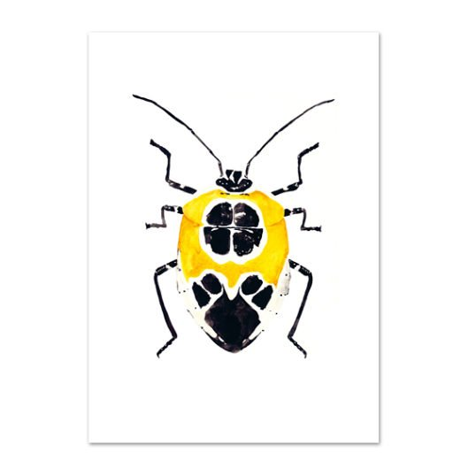 Leo La Douce Kunstdruck A4 Yellow Beetle