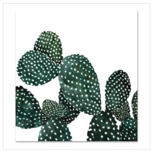 Leo La Douce Kunstdruck Cactus Family